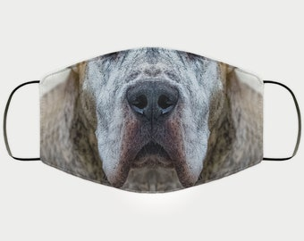 Face Mask Gift for Great Dane Dog Lover, Double Layer Protective Mask, Reusable, Washable, Breathable, Print Quality Present for Mom, Sister