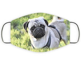 Face Mask Gift for Pug Dog Lover, Double Layer Protective Mask for Mom, Reusable, Washable, Breathable, Print Quality Image Mask for Dad