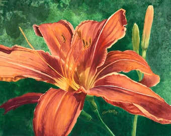 Tiger Lily, Giclee Print from Original Watercolor Painting