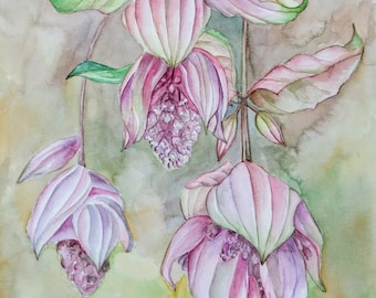 Watercolor painting of flowers