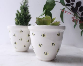 Ceramic plant pot with bee design, cactus pot, succulent pot, planter, flower pot, indoor planter