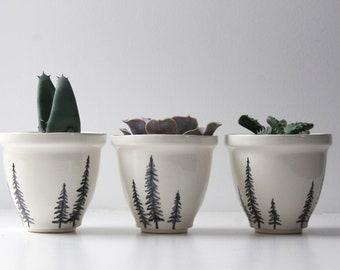 Ceramic plant pot with tree design, cactus pot, succulent pot, planter, flower pot, indoor planter