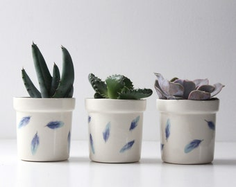 Cactus pot with feather design