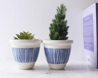 Ceramic plant pot