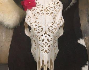 Glorfied Decorative Cow Skull