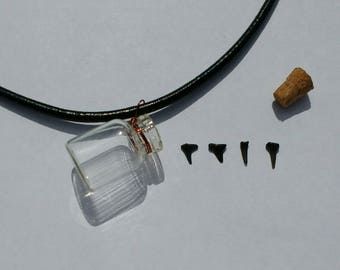 Shark Teeth in a Bottle Neclace