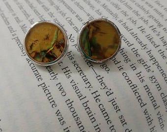 Vintage Opalescent Earrings