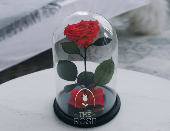 Beauty And The Beast Rose Red Mothers Day Gift Forever Etsy