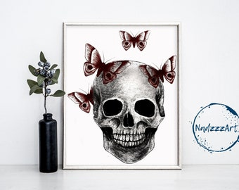 Moth and Skull illustration