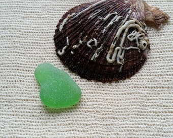 Japan Sea Glass Store
