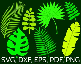 Set of 7 Jungle Tropical Leaves SVG Files for Cricut / Silhouette: Monstera, Banana, Palm Leaf clipart, perfect for a tropical wall decor