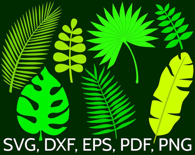 Featured listing image: Set of 7 Jungle Tropical Leaves SVG Files for Cricut / Silhouette: Monstera, Banana, Palm Leaf clipart, perfect for a tropical wall decor