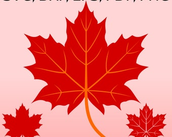 Maple Leaf SVG File for Cricut, Fall Leaf clipart, Canadian Maple Leaves DXF, Canada Maple Leaf Silhouette, Autumn SVG, Fall printable