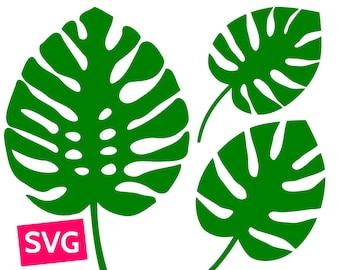 3 Monstera Leaf SVG files for Cricut, SVG Bundle Monstera leaves SVG, Tropical leaf svg, Tropical leaves svg, Monstera svg, Monstera clipart