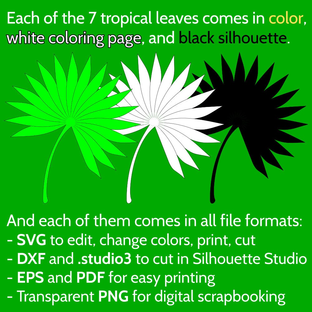 Set Of 7 Jungle Tropical Leaves Svg Files For Cricut Silhouette