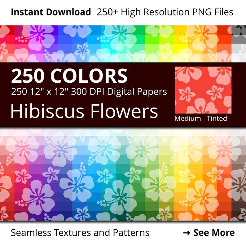 Tropical Hibiscus Flowers Digital Paper Pack 250 Colors image 0