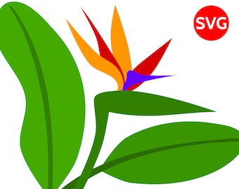 Tropical Flower SVG Bird of Paradise Flower and Leaves printable clipart to make tropical wall decor and tropical birthday party invites