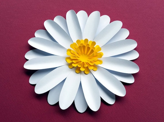 Easy diy daisy gerbera paper flower template svg and pdf to etsy image 0 maxwellsz