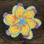 Colored Pencil Chicken of the Woods Wild Mushroom | Waterproof Vinyl Die-Cut Sticker