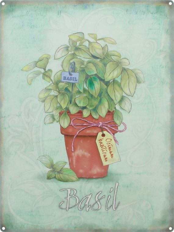 Basil Herbs Food /& Drink Gardening Gift Cooking Kitchen Small Metal Tin Sign