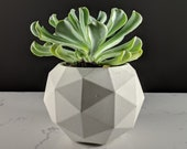 Geodesic sphere concrete succulent planter in gray, Handmade succulent and cactus pot