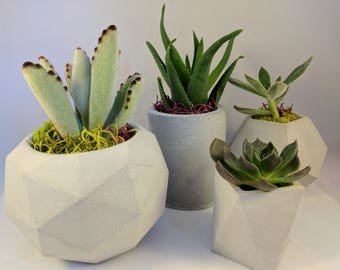Geometric concrete succulent planter set of 4, Handmade plant pots with saucer for indoor plants in various colors