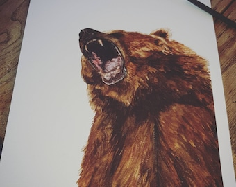 Grizzly bear limited edition A4 framed print.