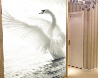 Swan Wallpaper Etsy