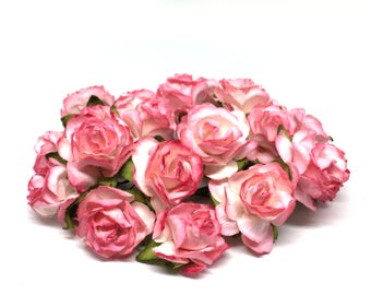 Salmon Pink And White Classic Mulberry Paper Roses Cr022