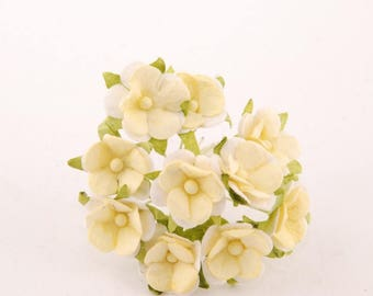 Cream And White Sweetheart Blossom Bl038