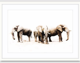 Made-to-order Elephant White African Desert Animal Photography Wall Art Prints