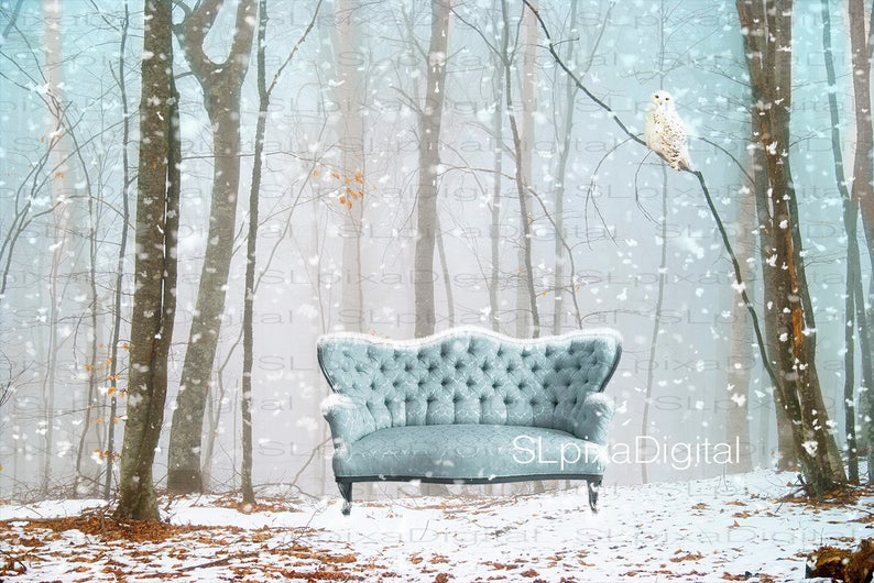 Maternity landscape Winter Digital backdrop Family digital background  christmas winter  #78Composite  photography