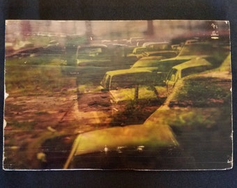 Planted Cars 6x9 inch photo transfer on wood