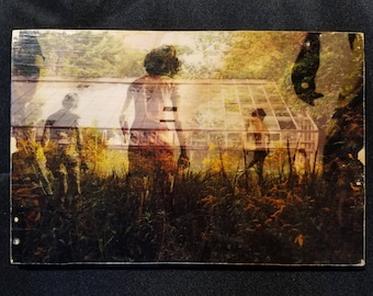 Greenhouse Overrun 6x9 inch photo transfer on wood