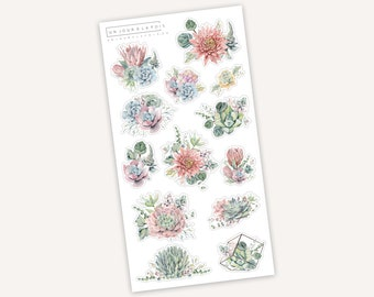 Succulents    13 stickers
