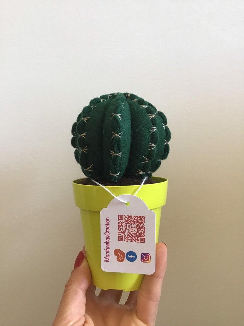 fake plant evergreen handmade plant wedding favor gift felt cactus homedecor Cactus fat plant in felt home decoration.