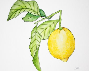 Lemon Watercolor Painting