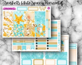 Horizontal White Space - Seashells