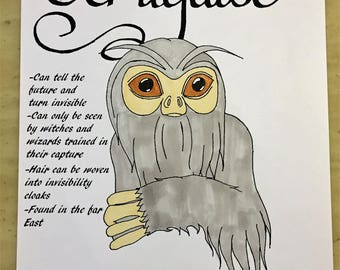 Fantastic Beasts And Where To Find Them Downloadable Coloring Page Demiguise