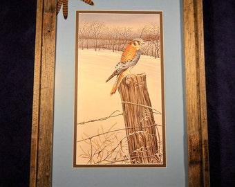 Robert Sissel vintage frame print, Kestrel