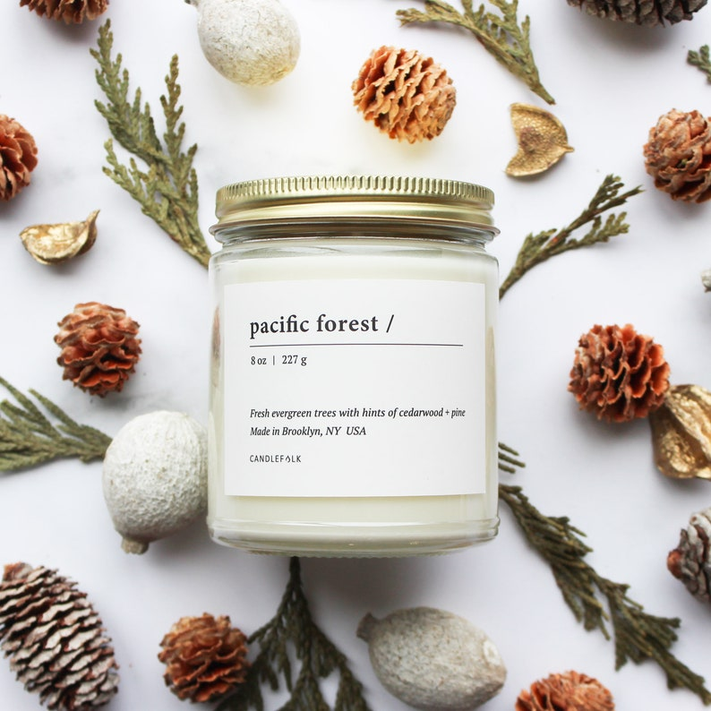 8 oz Soy Candle Hand-Poured Candlefolk PACIFIC FOREST