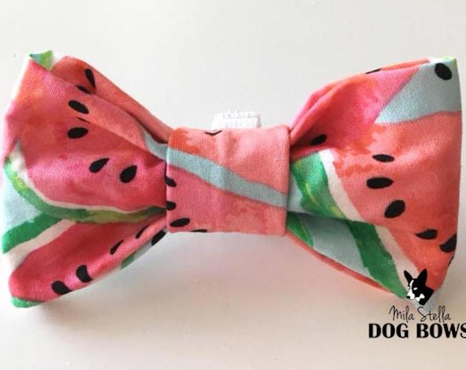 Watermelon - Original