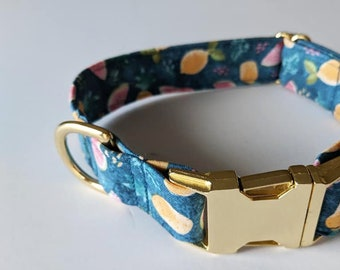 Fruity dog collar