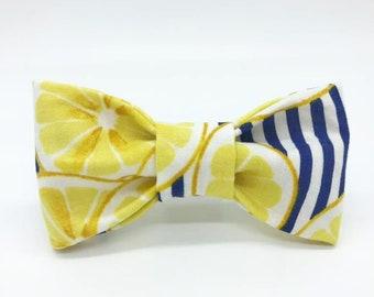 Lemon Stripes Dog Bowtie