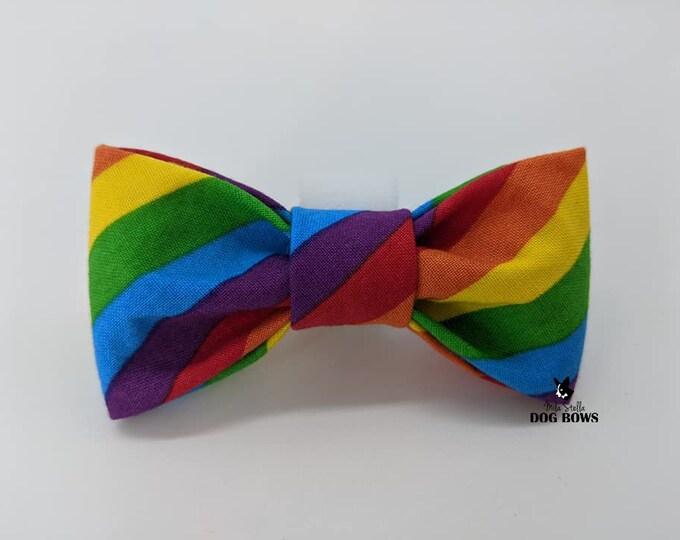 Featured listing image: Pride Dog Bow - Original