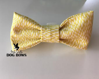 Yellow Palm Dog Bow