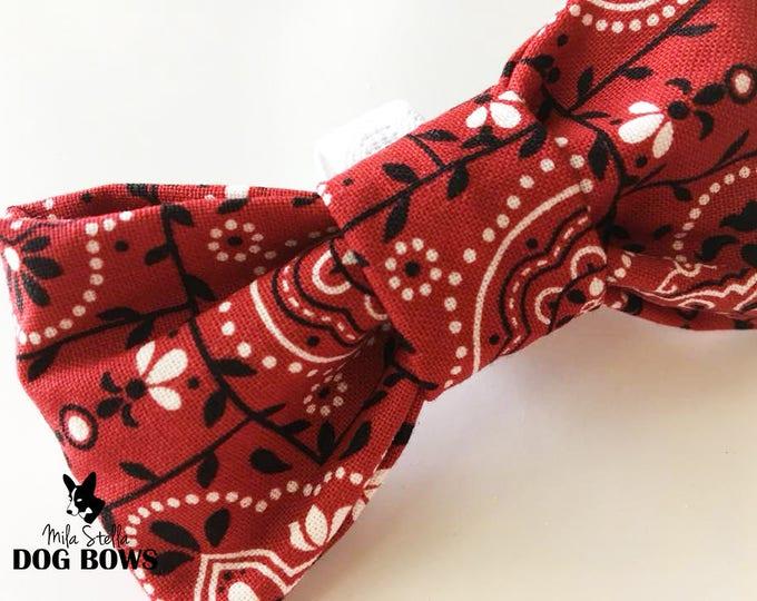 Red Bandana - Original