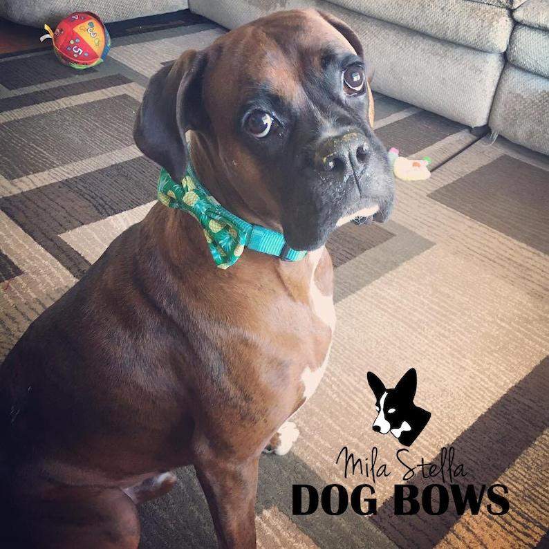 Red dog bowtie Red dog bow tie Valentine/'s Day dog bowtie Red Polka Dot Dog Bow Tie Polka Dot dog bow tie