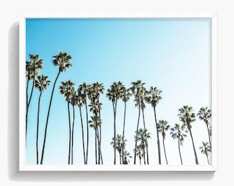 Palm Trees Print, Nature Art, California Print, Tropical Wall Art, Digital Download, Hawaii Art, Landscape Photo, Large Poster Print,  #484