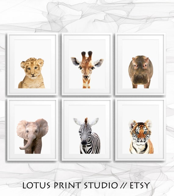 6 A5 Safari Jungle Animals Nursery Prints Set Of 6 Baby Room Pictures Wall Art